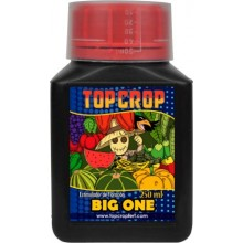 Big One (250ml,1l y 5l) Top Crop
