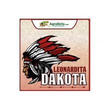 Leonardita Dakota (1l,5l y 10l) Agrobeta
